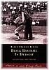BLACK BASEBALL IN DETROIT BOOK (SIGNED BY 2 OF THE AUTHORS)